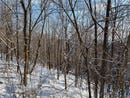 1 Skunk Hollow Road, Blair, WI 54616