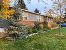 2107 11th St, Cody, WY 82414