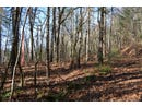 Grouse Hollow Rd, OTHER, GA 30537