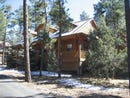 991 PINE VILLAGE Lane, Pinetop, AZ 85935