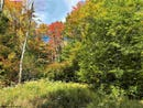 Lot 4 Northlake Drive, Davis, WV 26260