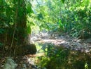 River's Edge: Mountain Home Construction Site For Sale in Puerto Cortés, Puerto Cortés, Puntarenas