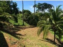 Uvita de Osa, FIRST TIME OFFERED, GREAT INVESTMENT OPPORTUNITY: FIRST TIME OFFERED, and priced to se, Uvita, Puntarenas