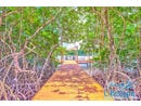 CoCo Road - First Bight, Roatan, Islas de la Bahia