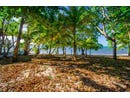 on this beachfront property, Roatan, Islas de la Bahia