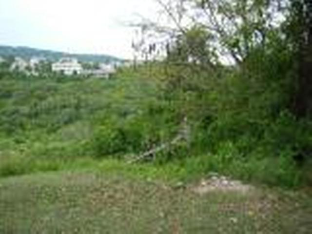 lot 299 torado heights montego bay st james