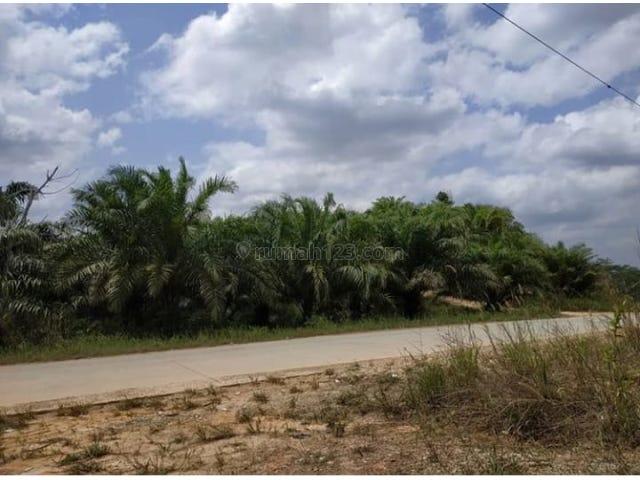 Tanah Terletak Di Jalan Raya Samboja Sepaku Luas 2 Hektar Ukuran 100 X 200 Shm Semoi Kec Sepaku Kab Penajam Pasir Utara Kalimantan Timur Penajam Paser Utara Kalimantan Timur Land Development For Sale